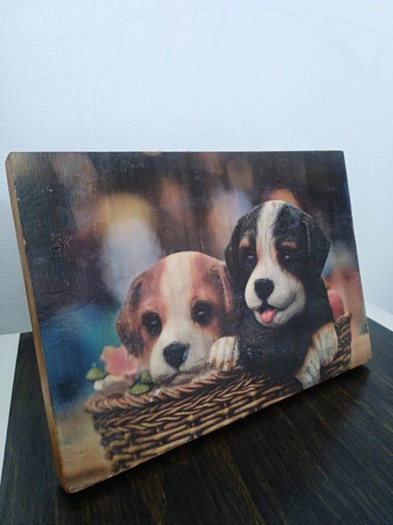 photo petit tableau: deux chiots dans panier chien, déco animal