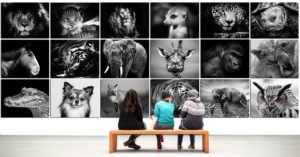 la déco inspirante tableau animal mural
