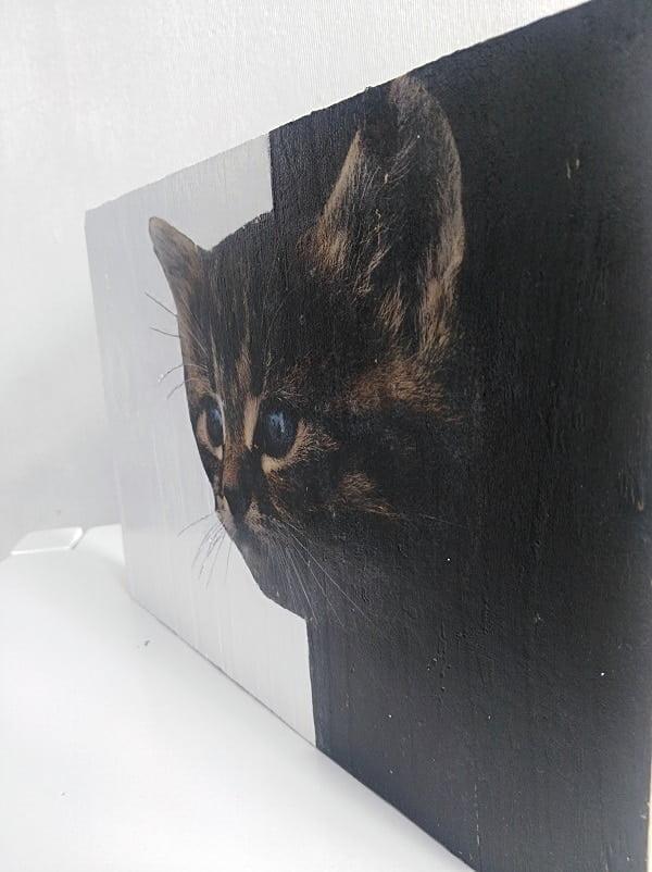 tableau illustre  chat noir sortir d une planche de bois